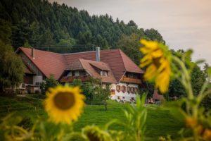 Agrarimmobilien Haus - Waldfürst