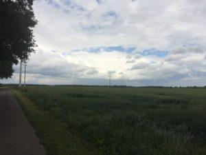 Wald kaufen - Waldfürst LosNr7 3